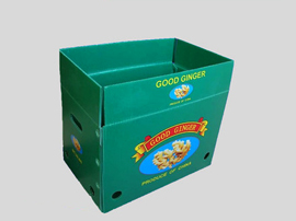 水果蔬菜专用箱